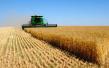 汪洋强调:深入推进农业供给侧结构性改革