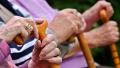 农村居家养老的嘉善模式:撬动市场力量,专业服务上门