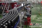 总投资3.5亿 中粮可口可乐华北饮料项目香河投产