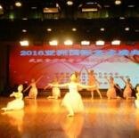 武汉小天鹅芭蕾舞蹈团