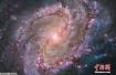 美国宇航局发现太阳系外7颗地球大小行星 或含液态水