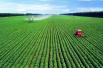 专家解析农产品目标价格补贴:需政策形成合力
