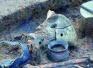 江蘇泗洪發現新石器時代大汶口文化遺址