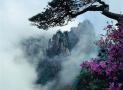 游客在三清山吃热狗 五人出现呕吐症状