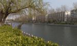 春风又绿徐州古黄河