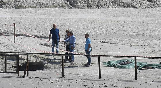 熊孩子翻栏杆坠入火山口 父母施救时遇难