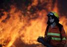 巴西森林发生野火