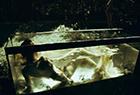胶片摄影诠释美人鱼