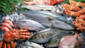 辽宁公布食品安全抽检信息 大连2批次鱼类不合格