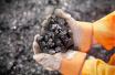煤价环比上涨0.2% 上周山东省生产资料价格以涨为主