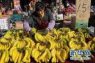 11月中旬开封蔬菜价格下降 香蕉价格略上涨