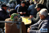 千年古镇上的老茶馆 品味来自历史的悠闲