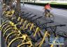 素质呢?北京街头ofo小黄车、摩拜单车被垒上树!