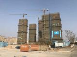 """南京一""""地王""""项目停工 业内:这不是孤例 建议低头降价"""