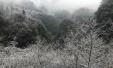 重庆奉节这些地方大面积降雪 山野银装素裹美妙绝伦