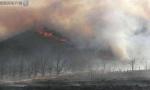 锦州一果树农场发生山火 消防部门展开救援