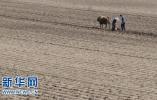 济南农地确权基本结束 25年耕地减少90余万亩