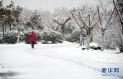 大暴雪本週降臨!
