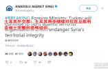 土耳其:安理会停火决议阻止不了攻打库尔德武装