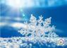 世界气象组织日前表示:欧洲极寒与北极高温相关联