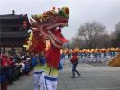 """沈阳""""龙抬头""""文化节好多龙 重要的是还能吃"""