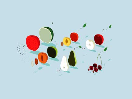 金沙国际棋牌娱乐:果蔬泡太久更脏 这才是科学的清洗方式!