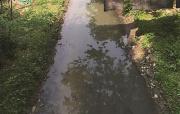 江苏今年整治129条黑臭河 年增逾10万个公共停车泊位