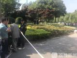 60岁老太失踪多日 发现时已死在公园绿化带里多日