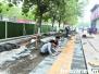 鹤壁完成道路绿化带海绵化改造81公里