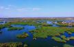 """""""江南水乡""""与大漠风光融为一体 宁夏的魅力沙湖"""