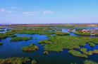 宁夏的魅力沙湖