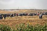 巴勒斯坦民众抗议美驻以使馆在耶路撒冷开馆