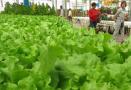 哈密国家农业科技园