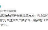 沪宁城际接触网异物处置完毕 列车运行逐步恢复
