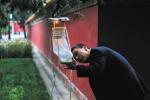 北京六大场所蚊密度监测显示 居民区蚊密度居六大场所之首