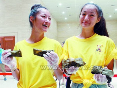 平顶山博物馆举办端午节文化系列活动