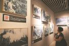 《抗日战争大事记图·印展》南京开展