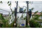 """台风""""安比""""侵袭江苏 部分地区农作物倒伏电力设施受损 启东雨最大"""
