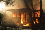 """雅典""""野火灭村""""致74死 希腊总理:我们处理不了,请欧盟援助"""