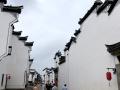 浙江龙游:文旅结合振兴乡村