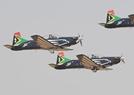 南非防务展开幕