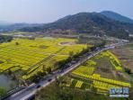 至2020年 洛阳每年修建农村公路不少于300公里