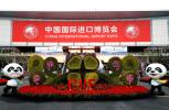 172个国家地区和国际组织参与的中国超级盛会 为何定在上海?