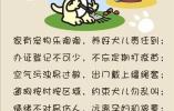 秦皇岛一居民违规养狗被处罚