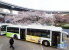 河北公交司机父子:践行承诺30年,接力帮扶伤残老人