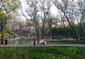 河南温县陈家沟拟入选首批全国旅游重点村名录