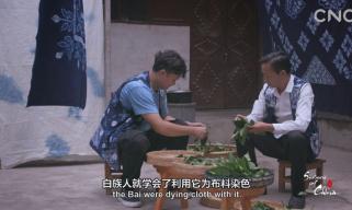 二十四节气大型纪录片《四季中国》 | 第十四集 处暑
