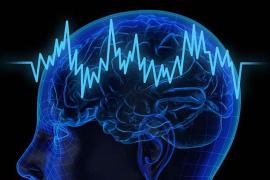 哈佛医学院研究:大脑过度活动与较短的寿命有关
