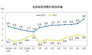 国家统计局:10月份全国居民消费价格同比上涨3.8%