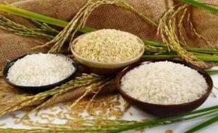 疫情引粮食危机要囤米?专家:米面无忧 不用囤
